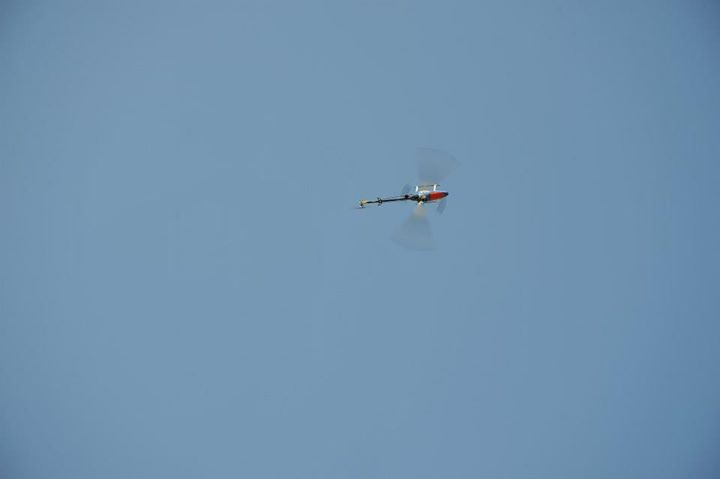 elicotteri radiocomandati by Modellismo Varesino Castronno _42